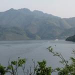 чайные плантации есть везде - и на берегах чудесного озера