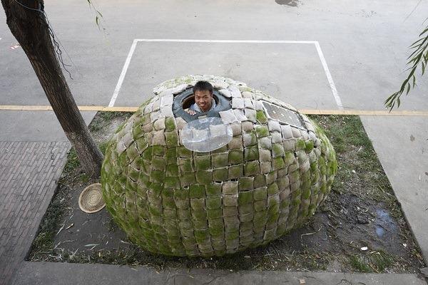 дом-яйцо, необычные дома