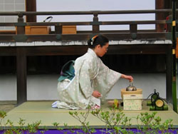 Японская чайная церемония в домашних условиях