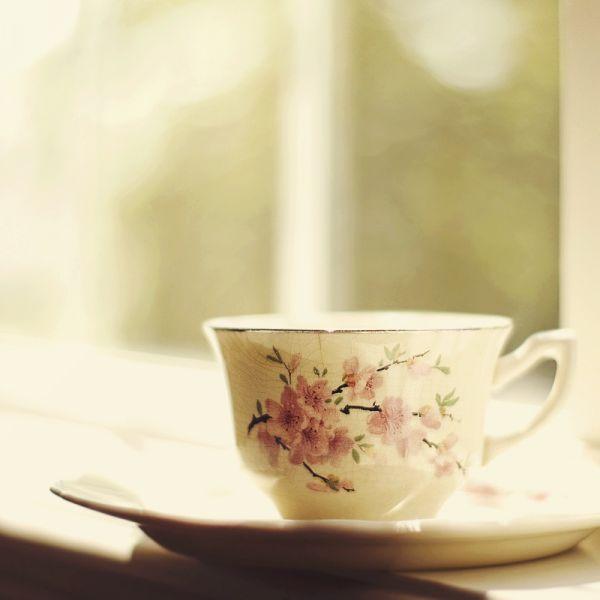 Профилактика болезней — выпить чая