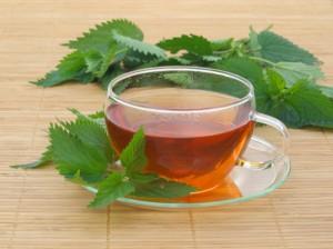 Очищение организма с помощью чая из крапивы