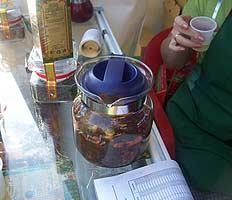 Русский чай растет в России повсеместно – даже на пустырях и пожарищах