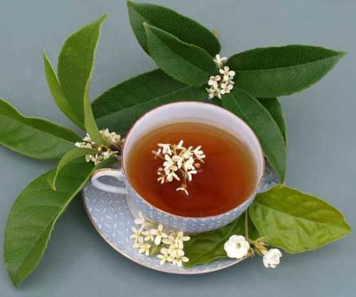 Чай с османтусом: красота и молодость в чашке