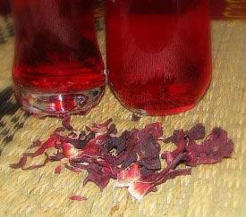 Чай с гибискусом поможет при гипертонии
