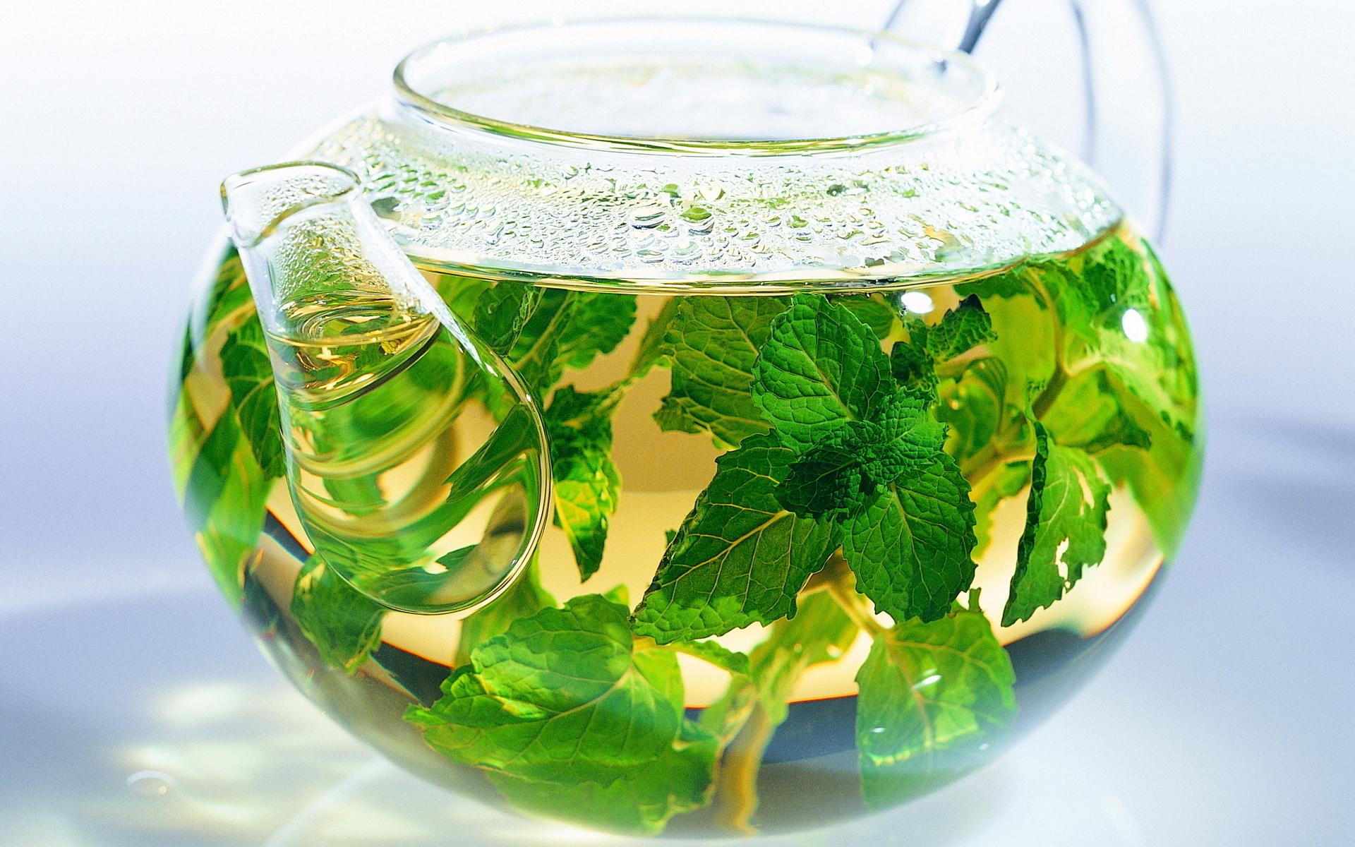 Полезные свойства мятного чая