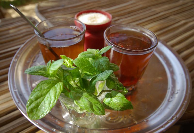 Свойства мятного чая