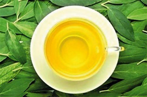 Зеленый чай спасет от старости
