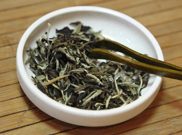 В Алтайском краю начался выпуск чая, в основе которого лежат натуральные травы