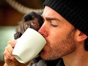Благодаря зеленому чаю, у мужчин улучшается память