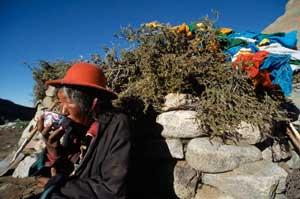 Тибетский способ заваривания чая
