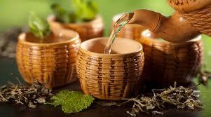 Какие целебные свойства чая известны медицине?