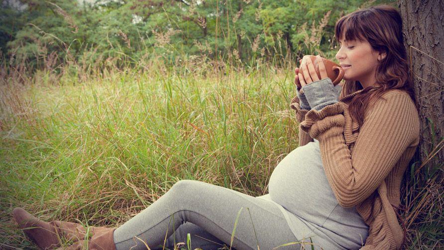 Травяной чай при беременности