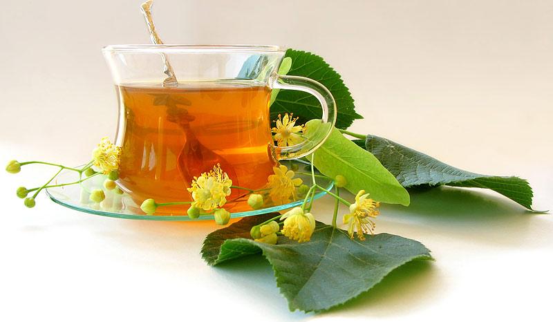 Зеленый чай и красное вино избавят от болезни Альцгеймера