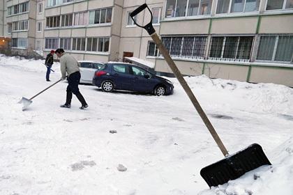 Онищенко разрешил заваривать чай снегом