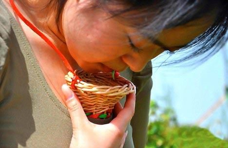 В Китае производят чай, собранный губами девственниц
