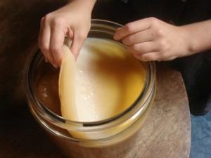 Противопоказания в использовании чайного гриба