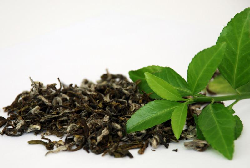 Чай способен предотвратить рак простаты — медики