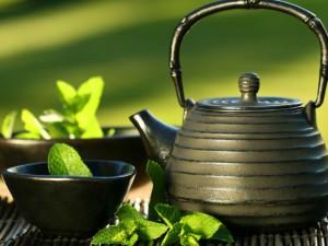 Зеленый чай — тоник, замедляющий старение организма