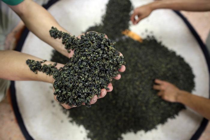 Фестиваль зелёного чая пройдёт в Корее