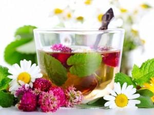 Ученые открыли уникальные свойства ромашкового чая