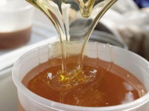 Чай с медом спасает глаза от вредного воздействия компьютера
