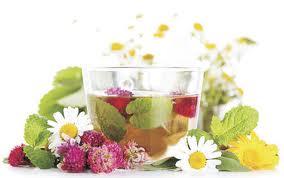 Травяной чай — напиток для женщины
