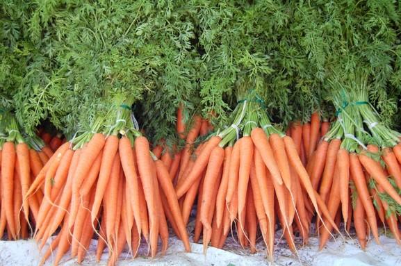 Польза морковного чая