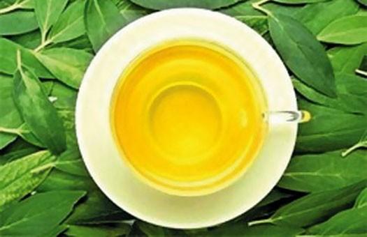 Зеленый чай поможет более эффективному вживлению имплантатов
