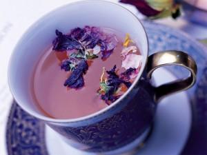 Чай без церемоний: как «выжать» из сухого листа максимум пользы