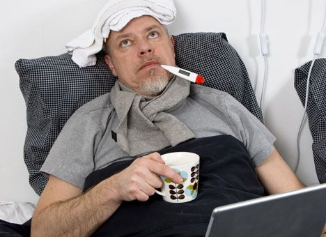 Сосновый чай является эффективным средством от простуды