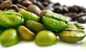 Как приготовить зеленый кофе