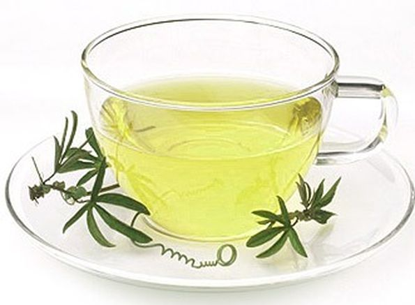Разгрузочные дни на зеленом чае: правила проведения разгрузочных дней