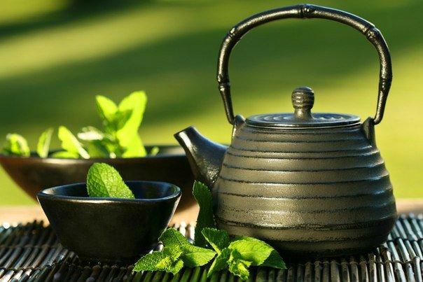 Зеленый чай укрепит зубы