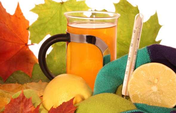 Народные средства при простуде в лечении ребенка