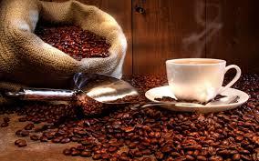 Выбор техники: как не ошибиться при выборе кофеварки