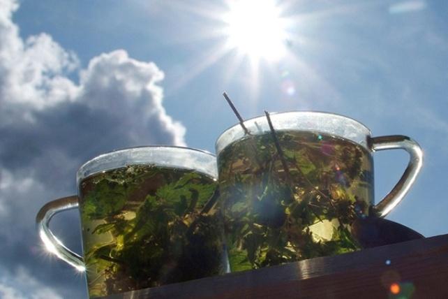 Все о пользе лекарственных травяных чаев