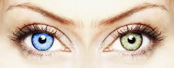 Счастливый взгляд —  доступные линзы и другие товары, которые связаны со зрением человека