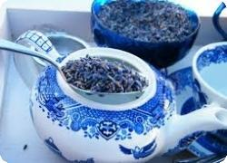 Готовим чай из лаванды