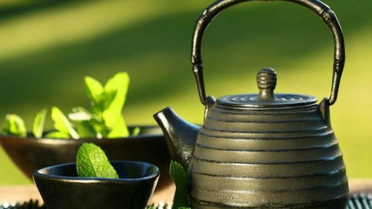 Все о вреде и пользе чая