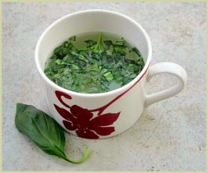 Чай с базиликом может послужить лекарством