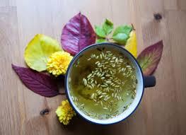 Фенхелевый чай принесет пользу организму