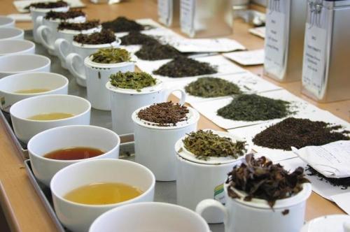 Основные различия между сортами чая