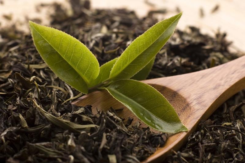 Названы самые необычные свойства чая