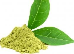 Зеленый чай-лучшее средство для профилактики маразма