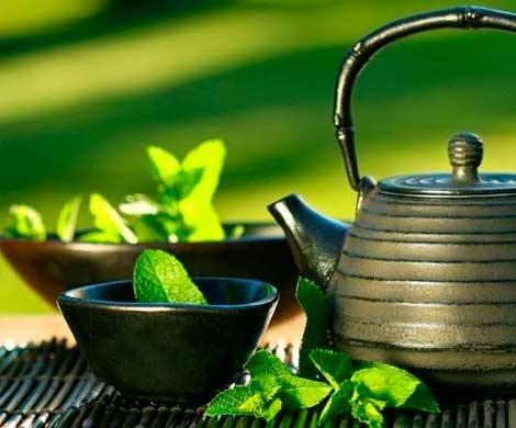Чай помогает укрепить скелет, защищая человека от переломов