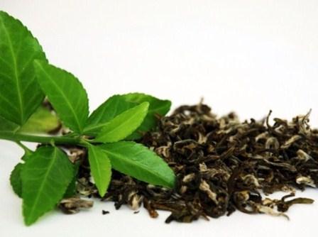 6 фактов в пользу зеленого чая