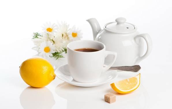 Все о лечебных свойствах чая