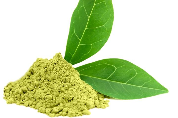 Экстракт зеленого чая сможет избавить от нейробластомы