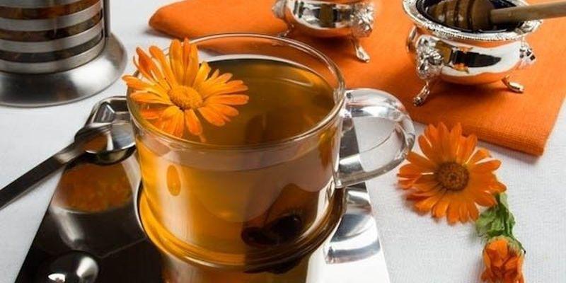 Чай из календулы поможет при заболеваниях печени