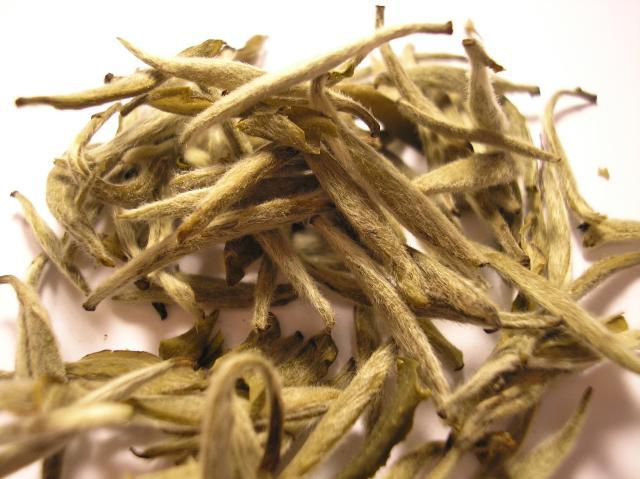 Белый чай и его особенности
